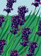 Remede naturel pour la toux Découvrez 4 secrets que nos grands mères connaissaient! Remede naturel toux...