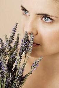 Guide de gemmothérapie anti stress