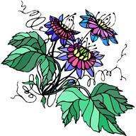 Sommeil et Phytothérapie... Des exemples concrets de plantes favorisant l'endormissement