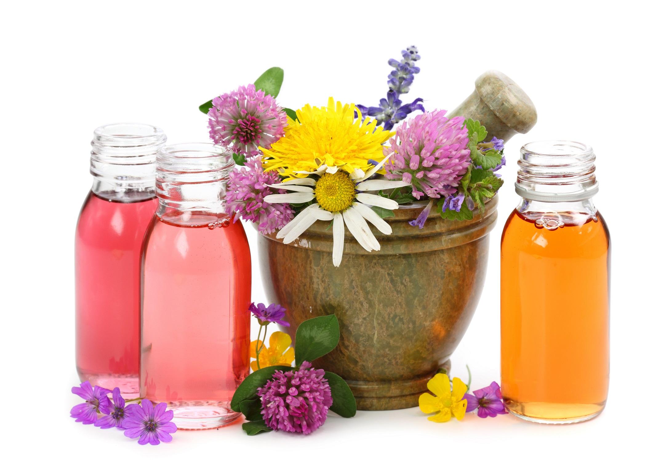 Tout Savoir sur l'Aromathérapie